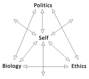 Epigenetic Model 2.0