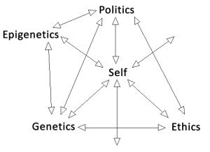 Epigenetic Model 3.0
