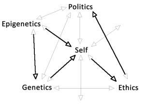 Epigenetic Model 3.0b